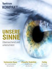 Cover Spektrum Kompakt:  Unsere Sinne – überraschend und unterschätzt